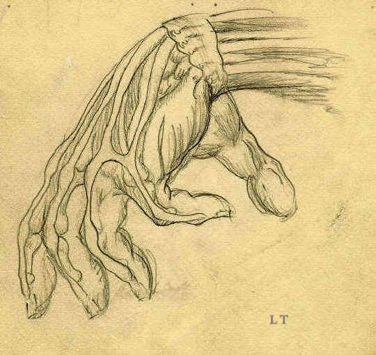 Art Fundamental Studies Drawing The Human Hand 1